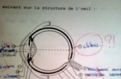 Article : Un clitoris dans l'oeil