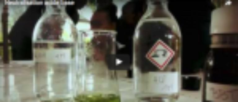 Article : Neutralisation acide-base en ambiance étrange [Vidéo]