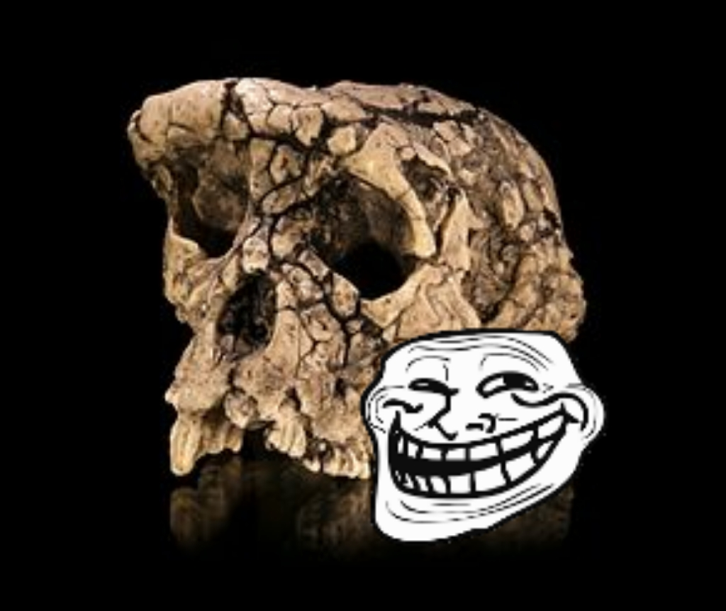 Sahelanthropus trollé