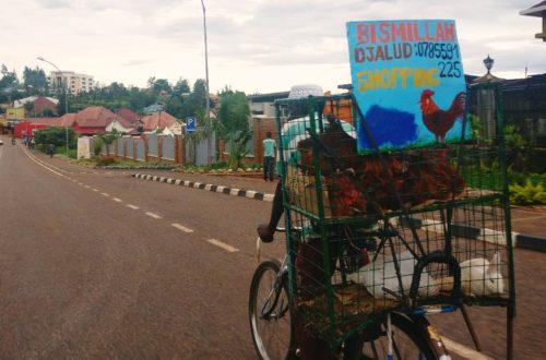 Article : Il y a 25 ans, la communauté musulmane du Rwanda a résisté au génocide des Tutsi