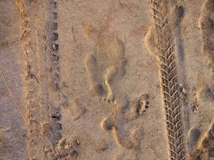 traces plage